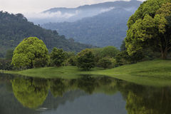 Lake garden. Taiping perak malaysia Royalty Free Stock Photos