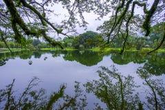 Lake Garden, Taiping. Took this photo during travelling trip to Taiping, Perak,Malaysia Royalty Free Stock Photography