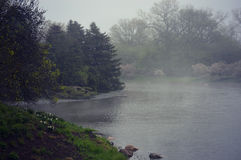 Lake and Gardens Fog Royalty Free Stock Photography