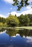 Lake and Gardens at Forde Abbey, Dorset Stock Image