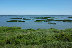 Lake Gardno. In Slowinski National Park, Poland royalty free stock photo
