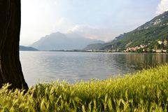 Lake Garlate near Lecco with high grass meadow in forefront. Beautiful panoramic view to the lake Garlate near Lecco with high grass meadow in forefront royalty free stock photos