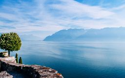 Lake Geneva shore in Chexbres Lavaux with lone tree at view point terrace stock photo