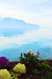 Lake Geneva and colorful flowers in Switzerland, Europe Stock Images