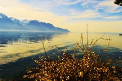 Lake Geneva in the evening, in Switzerland, Europe Royalty Free Stock Photography