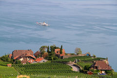 Lake Geneva and Lavaux. Lake Geneva is on the north side of the Alps, shared between Switzerland and France. The Lavaux consist of 830 hectares of terraced stock images