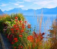 Lake Geneva. Schweitz. Europa Royaltyfri Bild