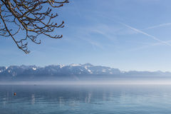 Lake Geneva in Spring. Spring is in the air Royalty Free Stock Photos