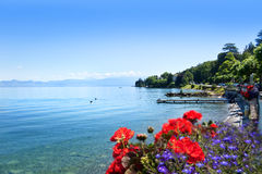 Lake Geneva, Swiss Stock Images