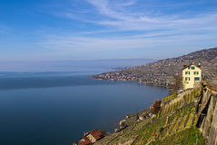 Lake Geneva. Vineyards of the Lavaux region over lake Leman (lake of Geneva Royalty Free Stock Photo