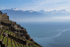 Lake Geneva. Vineyards of the Lavaux region over lake Leman (lake of Geneva Royalty Free Stock Image