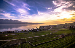Lake Geneva. Vineyards of the Lavaux region over lake Leman (lake of Geneva Stock Photos