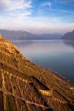 Lake Geneva Stock Photos