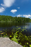 A lake in Germany. Big Arber Lake in National Park Bavarian Forest - Germany Stock Image