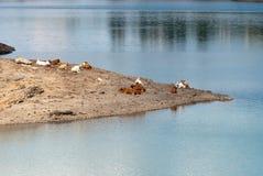 Lake Giacopiane Stock Photo