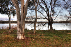 Lake Ginninderra Royalty Free Stock Images