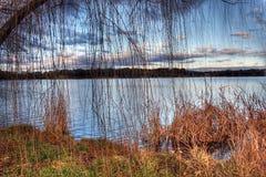 Lake Ginninderra Royalty Free Stock Photo