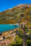 Lake at glacier Perito Moreno in Patagonia. South America Stock Photography