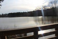 Lake Glare. Sun park outdoor stock photos