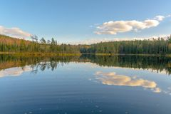 The lake in the forest. Belarus royalty free stock images
