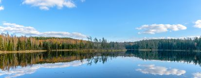 The lake in the forest. Belarus royalty free stock photography