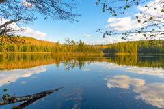 The lake Glubelka in the forest. Belarus royalty free stock photo