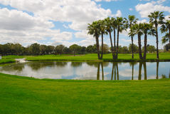 Lake golf Royalty Free Stock Image