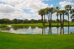 Lake golf Royalty Free Stock Image