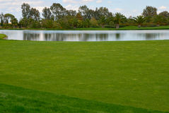 Lake golf course Royalty Free Stock Image