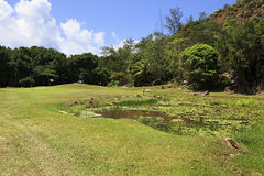 Lake on golf course at the Constance Lemuria Royalty Free Stock Image