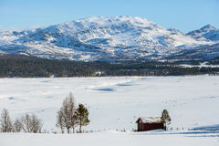 The lake Grana ( Granasjøen), Norway Stock Images