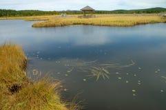 Lake and grassland Stock Photo