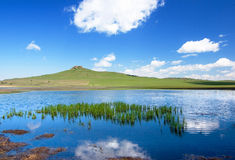 Lake and grassland Stock Photo