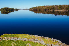 Lake with a grassy beach and distant forest Stock Image