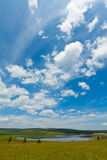 Lake and green grass under the blue sky and white clouds Royalty Free Stock Images