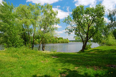 Lake and green meadow in sunny day Royalty Free Stock Images