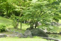 Lake, green plant, tree, grass in Japanese zen garden. Lake, green plant, tree and grass in Japanese zen garden Stock Images