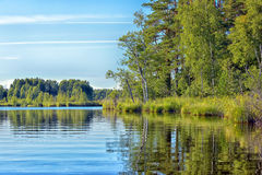 Lake, green trees and reflection in the water Stock Photos
