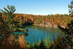 Lake with green water in autumn Stock Image