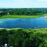 Lake. And greenery from a bird`s eye view royalty free stock photos
