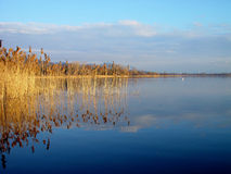 Lake Greifensee Royalty Free Stock Images