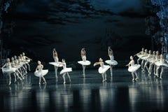 The Lake group dance-ballet Swan Lake Royalty Free Stock Image