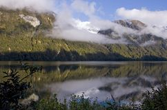Lake Gunn. New-Zealand south island Stock Images