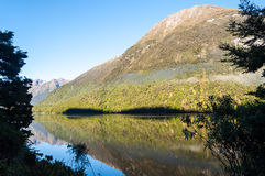 Lake Gunn, New Zealand Stock Images