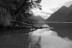 Lake Gunn. On the south island of New Zealand Royalty Free Stock Image