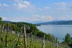 Lake Hallwil Switzerland Royalty Free Stock Photos