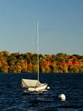 Lake Harriet Sail Boat against Colorful Autumn Foliage Royalty Free Stock Image