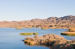 Lake Havasu. South of  City, Arizona royalty free stock photography