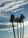 Lake Havasu Stockfotografie