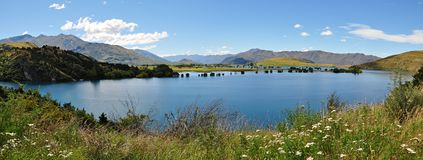Lake Hawea royaltyfri bild